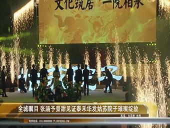 泰禾华发姑苏院子视频图