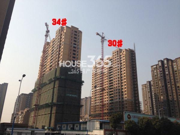 九洲花园缇香郡30、34#工程进度(2015.2)