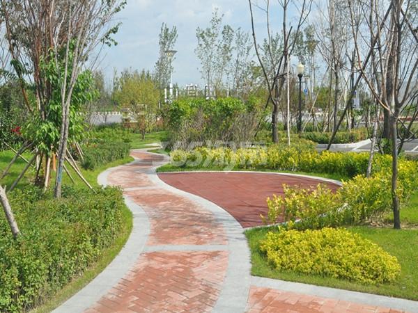园林实景图 拍摄于2015.09.08