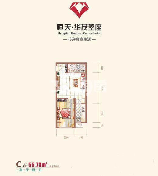 恒天华茂星座C3户型一室一厅一卫一厨55.73平米