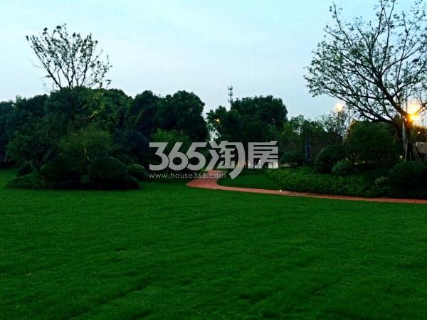 万科碧桂园现场照片