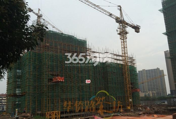 禹洲吉庆里施工实景图(6.23)