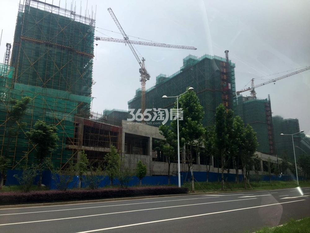 高科荣境在建楼栋实景图(7.13)