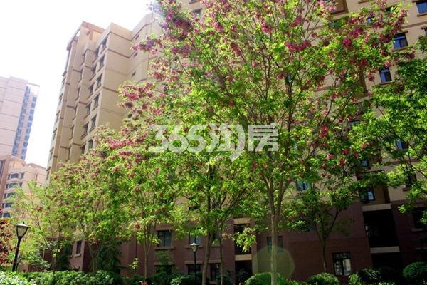 西固人家园林实景图(2017.5.15)