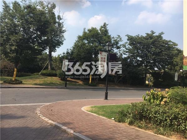 翠屏城周边道路(8.2)