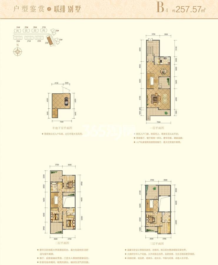 信德半岛别墅B4联排别墅户型图