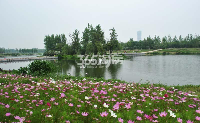 重庆紫云秘境花海景区