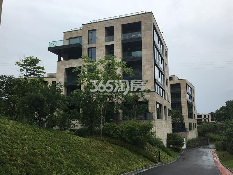 西溪十九府项目实景图(2017.9)